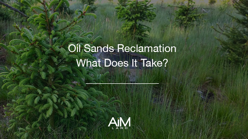 Alberta Oil Sands Reclamation